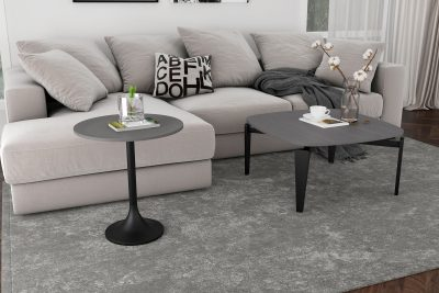 Preferences of Purchasing From Sofa Stores Toronto